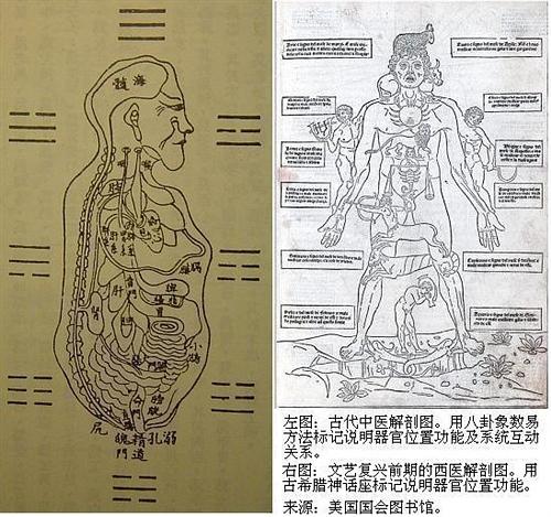 科技 西医/附图是中医西医人体解剖图的对比实例。